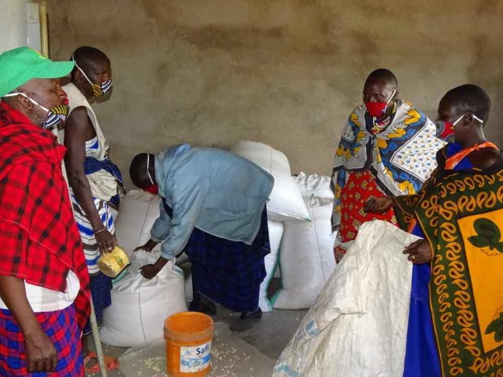 Maisverteilung nach Missernste 2020 (1)